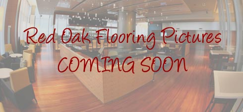 Staybull® Red Oak Flooring