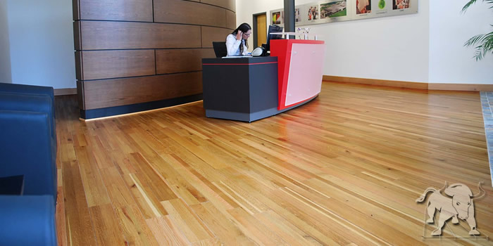 White Oak Staybull Flooring®